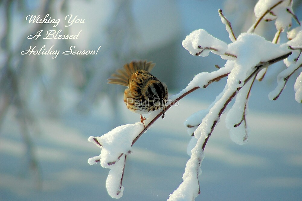 Wishing You a Blessed Hoilday Season! by Paul Gitto