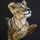 Future Lion King  --  Pastel by Linda Sparks