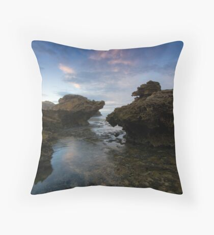 Planet X&Y Throw Pillow