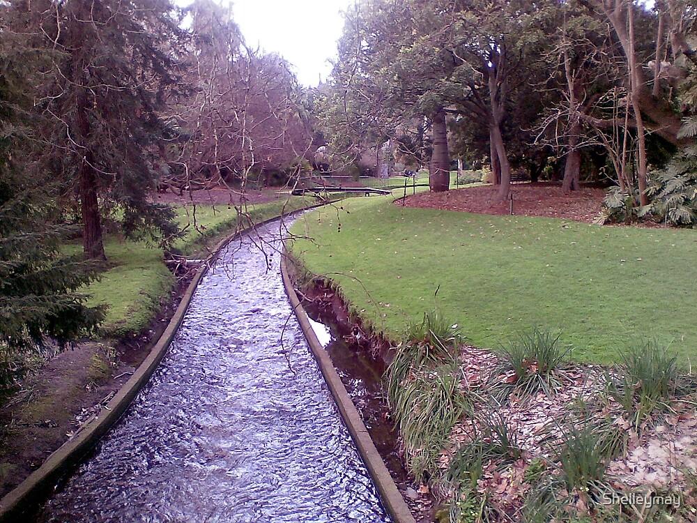 Bridge in Adelaide Botanic Gardens by Shelleymay