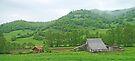 The Green of western Bosnia by Graeme  Hyde