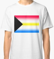 Demi-Pansexual (Version 2/2) Classic T-Shirt