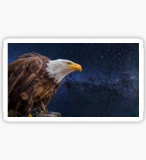A beautiful picture of bald eagle and stars  Sticker