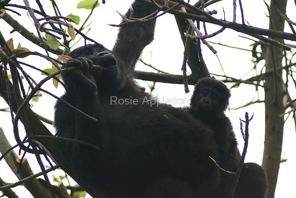 Mother and babe by Rosie Appleton