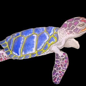 Vibrant Multicolored Sea Turtle by W1nt3rs