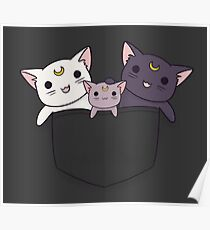 Pocket Kitties (All 3) Poster
