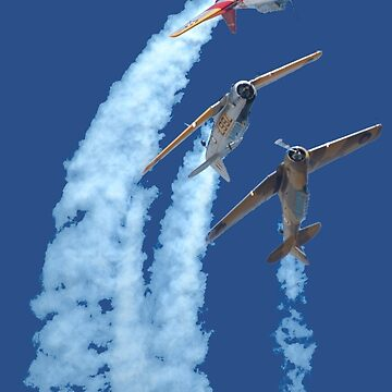 Plane & Simple - Southern Knights Aerobatic Team by muz2142
