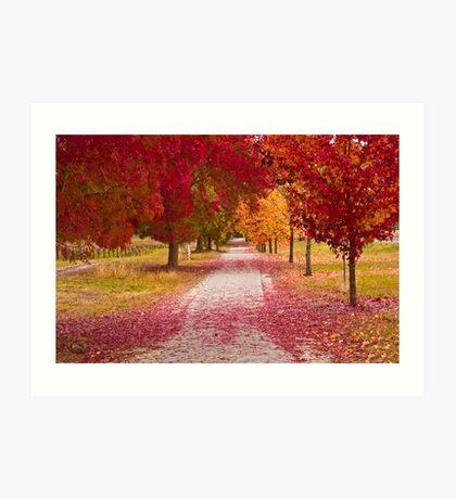 Bright Red Path  Art Print