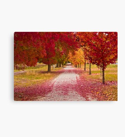 Bright Red Path  Canvas Print