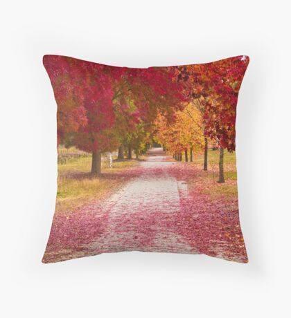 Bright Red Path  Throw Pillow