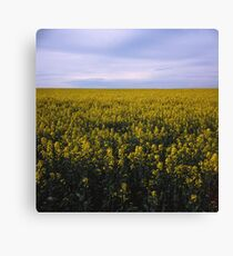 Repetition Canvas Print