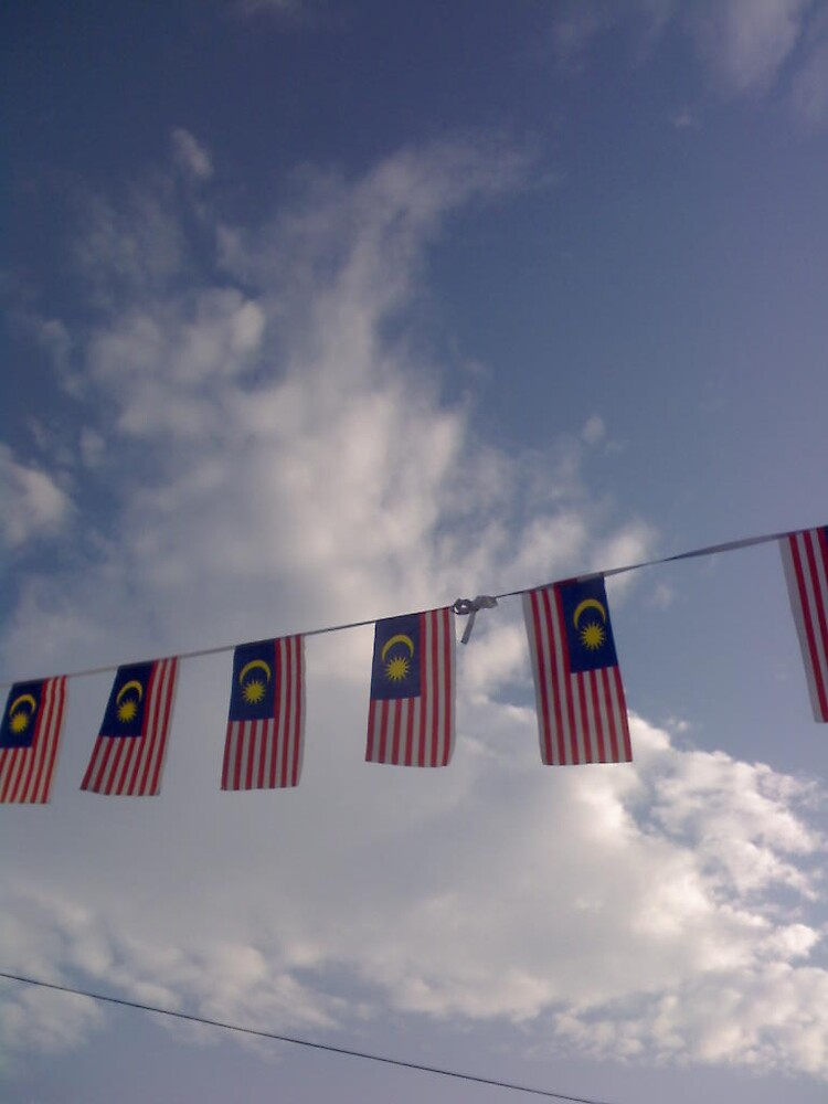 flags by msajo