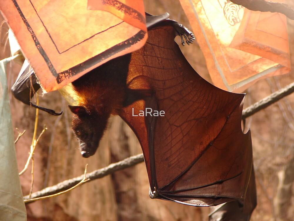 Bat by LaRae