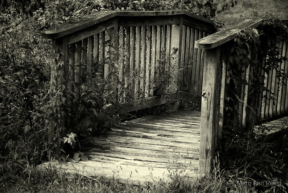 Bridge by Mary Ann Reilly