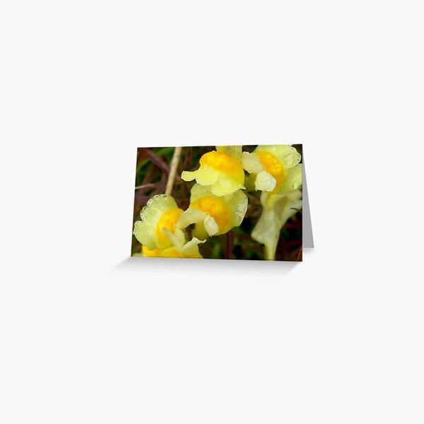 Yellow Rain Greeting Card