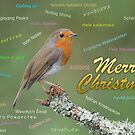 Merry christmas card in different languages by alan tunnicliffe