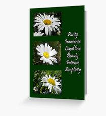 Common Daisy Collage Purity, Innocence and Love Greeting Greeting Card