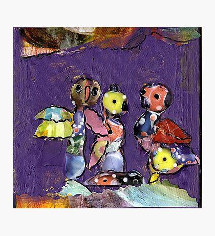 Kooky-Birds;-) Photographic Print