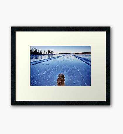 On ice Framed Print