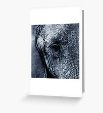Ellie Fanta Greeting Card