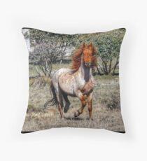 """"""" Stallion with an Attitude """" Throw Pillow"""