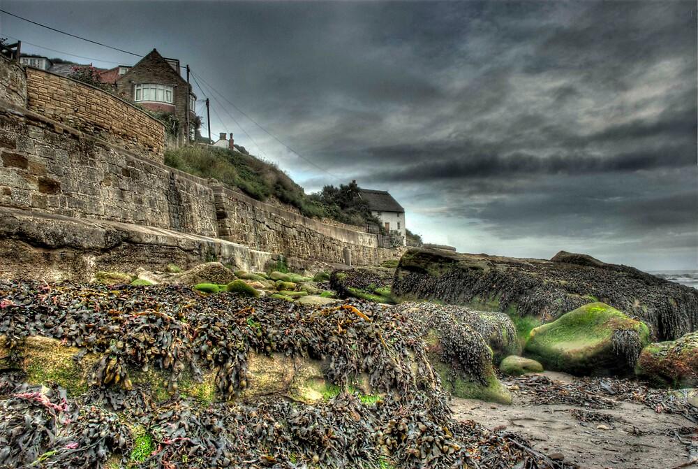 Grey day at Runswick Bay by WhartonWizard
