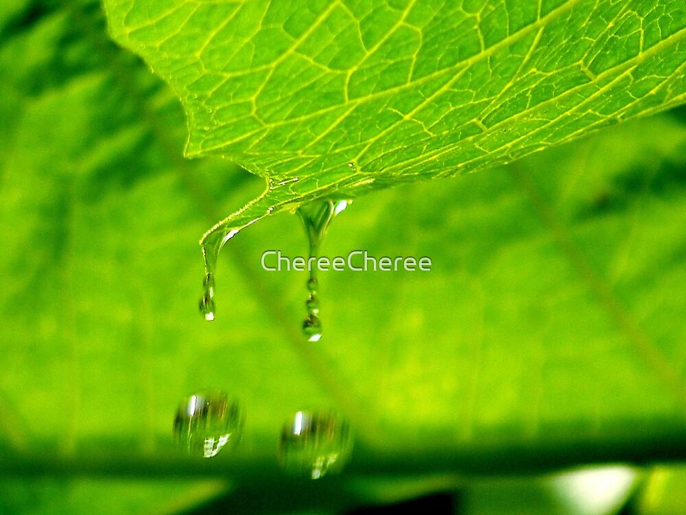 Double Droplets by ChereeCheree