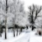 Winter Illusion by Teresa Zieba