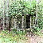 Pillbox In The Woods  by Paul Lubaczewski
