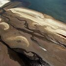 Flamingo delta by Michelle Dry