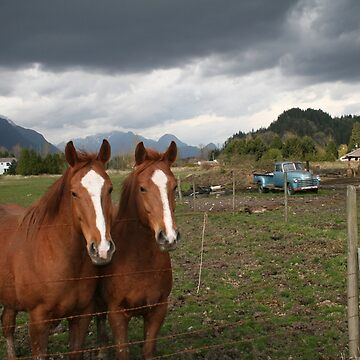 Country Twins by PrairieRose
