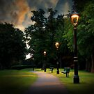 path lights  by Jon Baxter