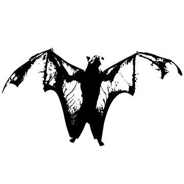 Halloween Flying Grunge Bat, with Wings Spread, Flying Rat by ScottSakamoto
