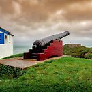 Tenby Cannon by mlphoto
