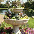 Succulent Fountain by anitahiltz
