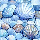 Sea Shells Aqua by SamNagel