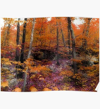 Colors of Fall on Ramapo Mountain, North New Jersey Poster