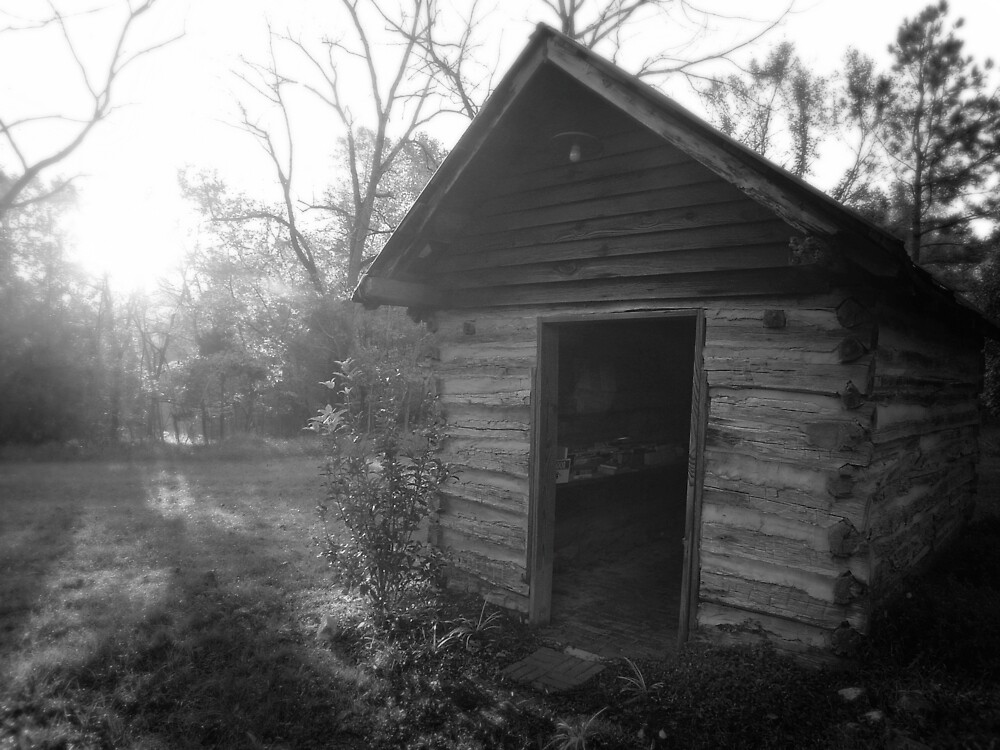 Lending library in Fearrington Village, NC by colleenboston