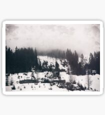 winter photo #winter #blackandwhite #photography Sticker