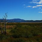 Lake Mitchell.....Tablelands.....Tropical North Queensland by Imi Koetz