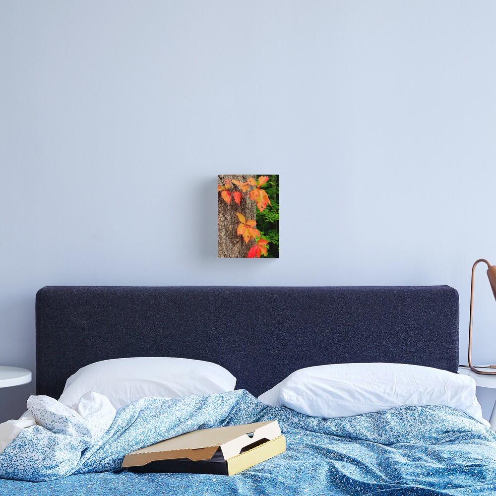 Be Canvas Print