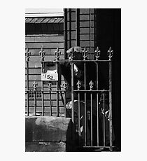The man from 152 Photographic Print