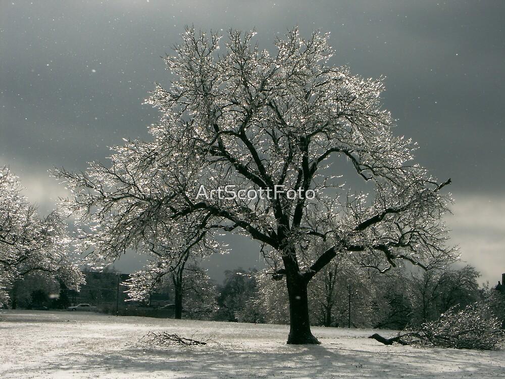 Iced Tree 2 by ArtScottFoto