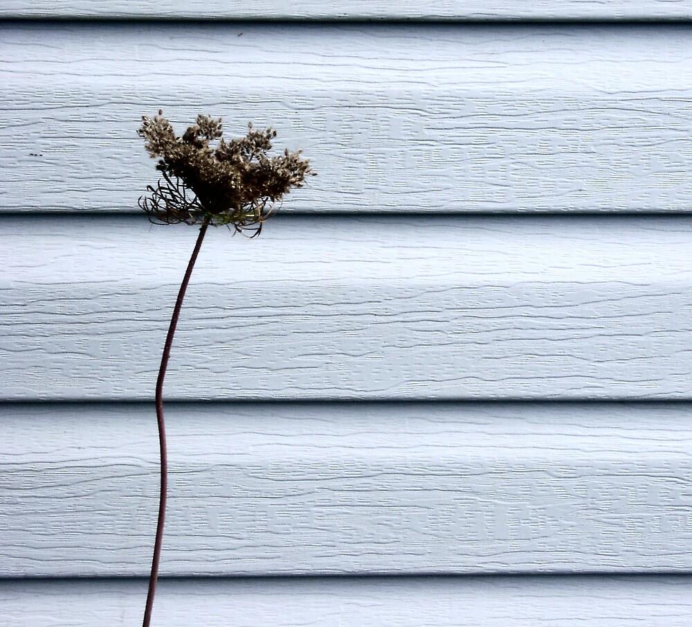 Weed by Maya Farrow