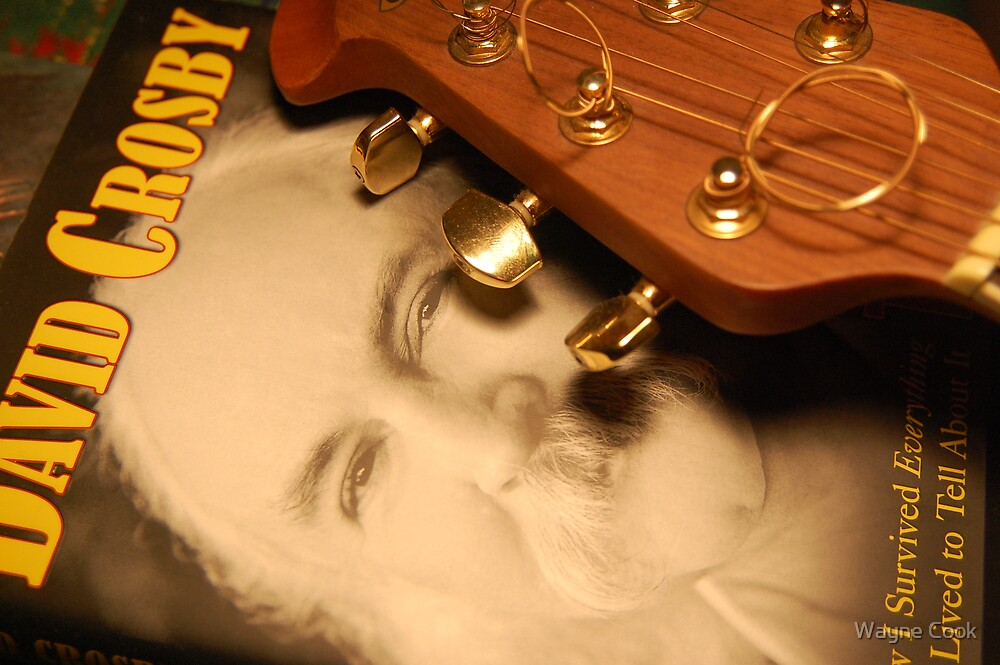 David Crosby by Wayne Cook
