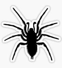 Black Spider Sticker