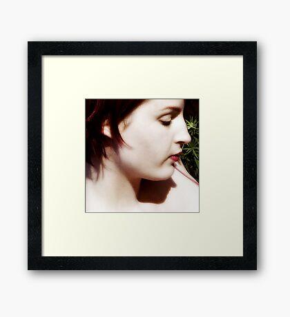 Untitled #16 Framed Print