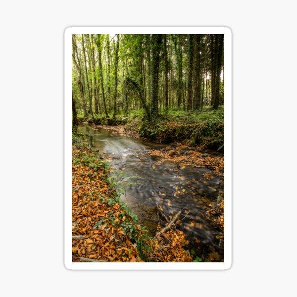 Autumnal Stream Sticker
