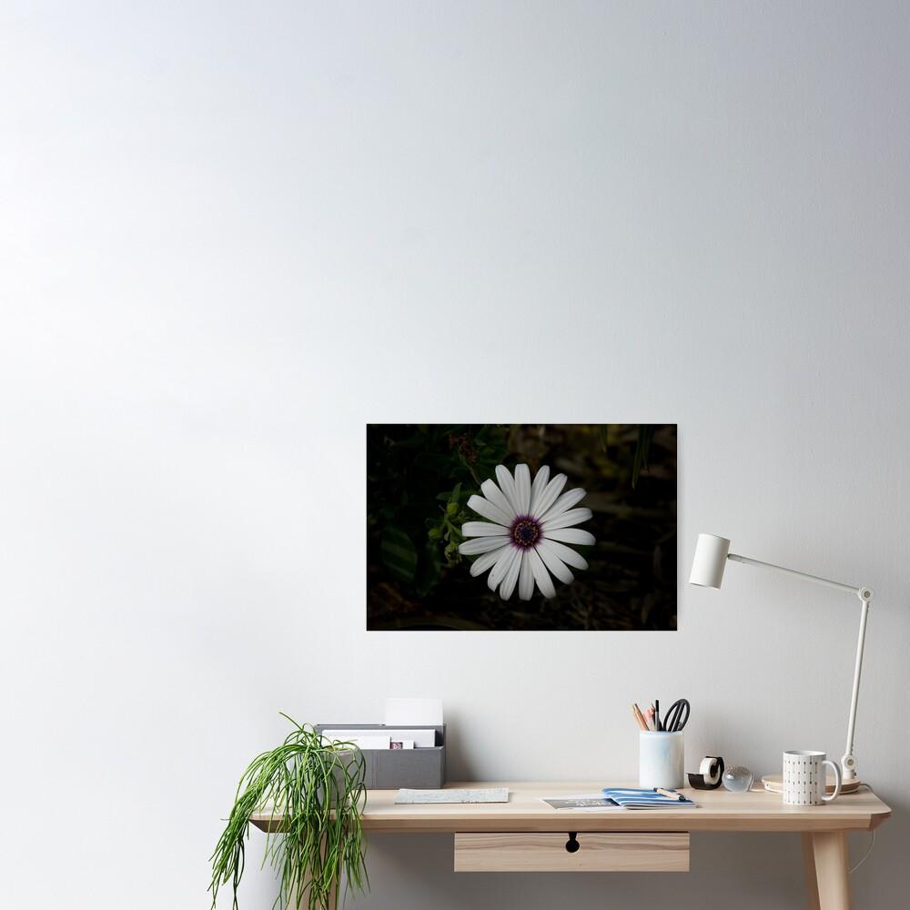Light from the dark Poster