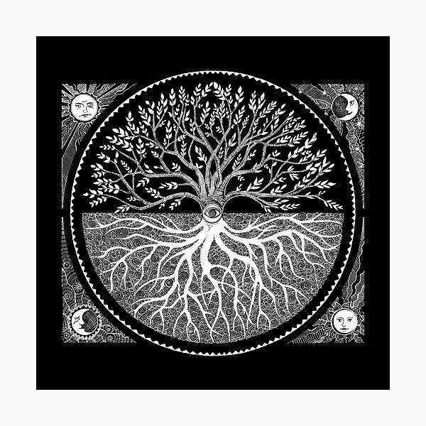 Druid Tree of LIfe Photographic Print